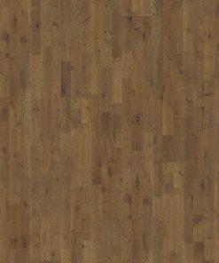 Oak Backa
