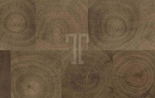 Ted Todd - Parquetry Collection - Celestial